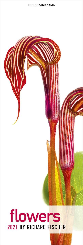 csm_Flowers-Kalender-2021-Richard-Fischer_90d76907f3